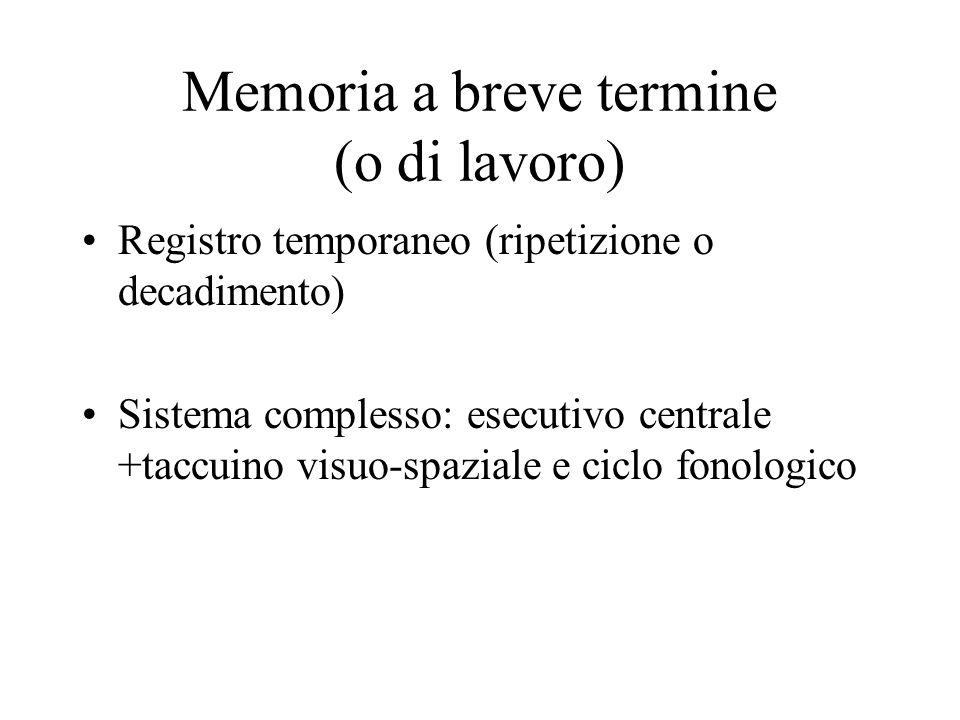Memoria a breve termine (o di lavoro) Registro temporaneo (ripetizione o decadimento) Sistema complesso: esecutivo centrale +taccuino visuo-spaziale e