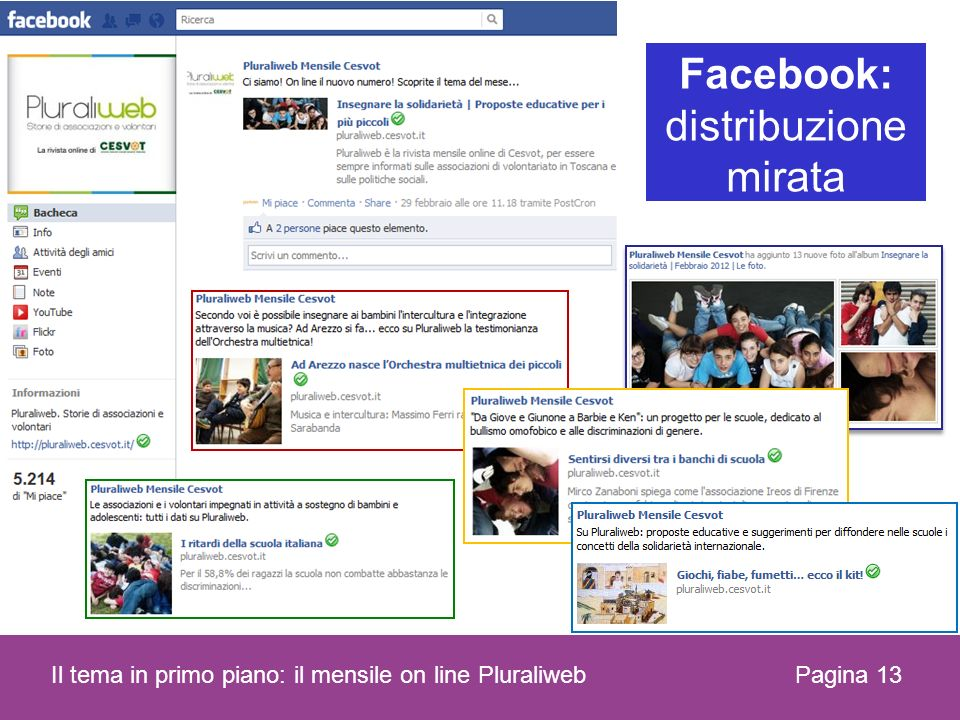 Pagina 13 Il tema in primo piano: il mensile on line Pluraliweb Facebook: distribuzione mirata