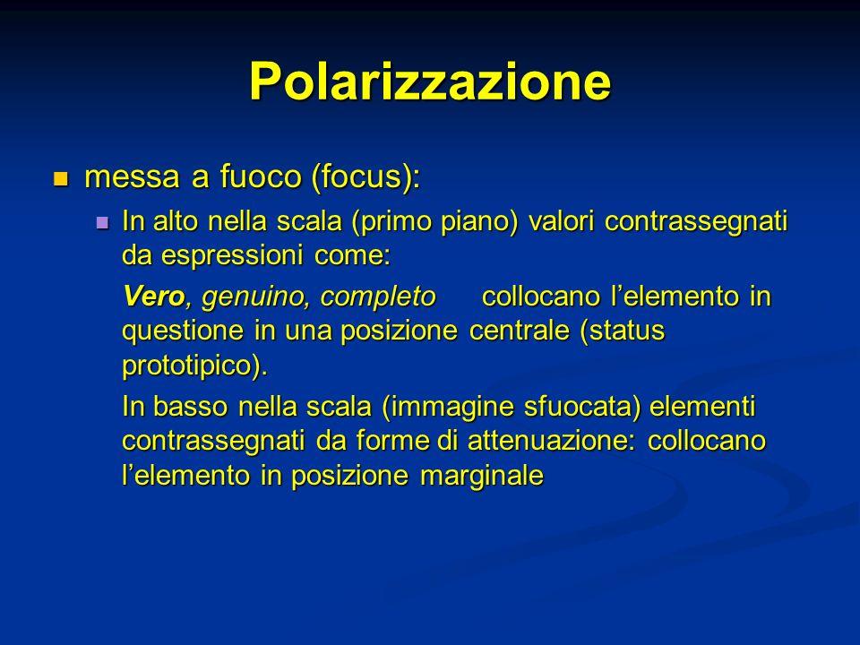 Polarizzazione messa a fuoco (focus): messa a fuoco (focus): In alto nella scala (primo piano) valori contrassegnati da espressioni come: In alto nell