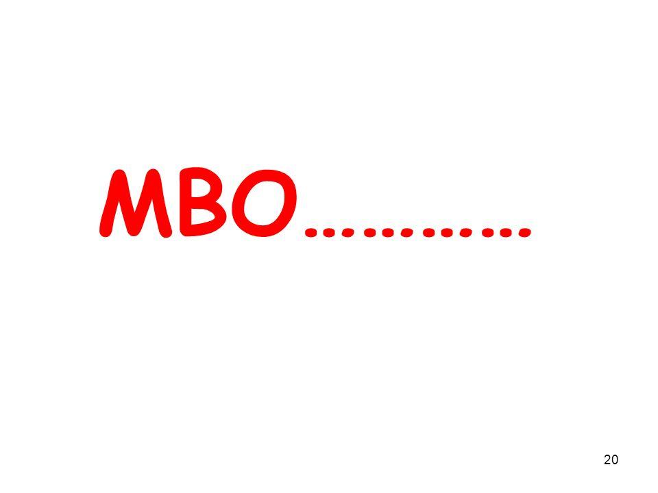 20 MBO…………