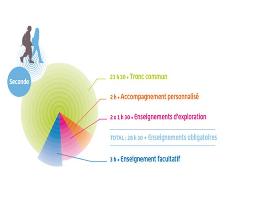 Les principales nouveautés de la première La constitution dun ensemble denseignements communs (français, langues vivantes, histoire-géographie, EPS, ECJS) représentant 60 % de lemploi du temps.