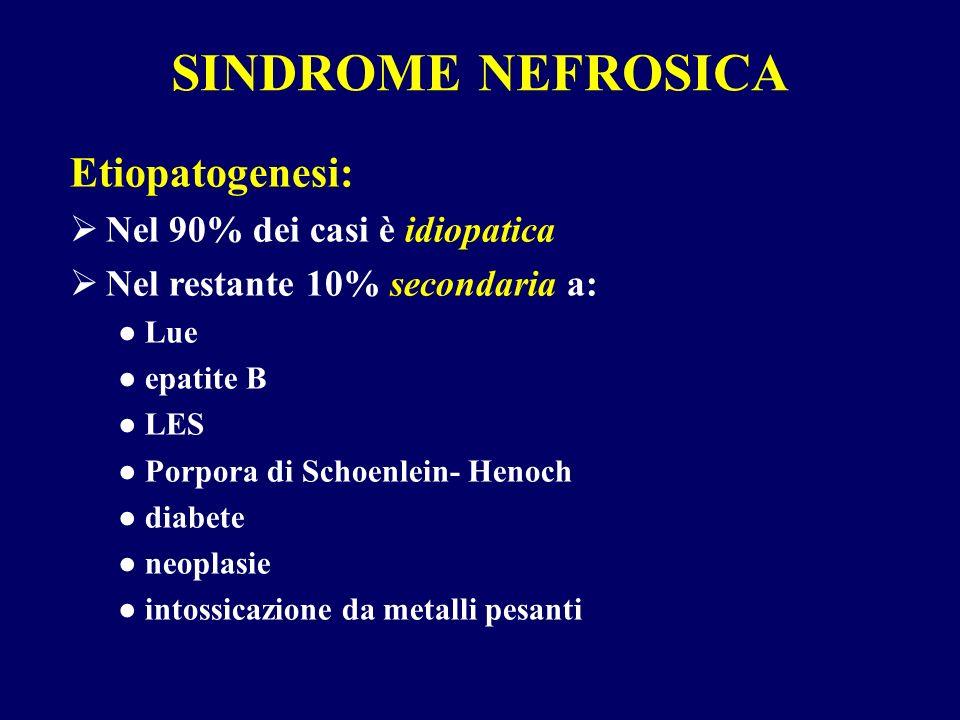 Etiopatogenesi: Nel 90% dei casi è idiopatica Nel restante 10% secondaria a: Lue epatite B LES Porpora di Schoenlein- Henoch diabete neoplasie intossi