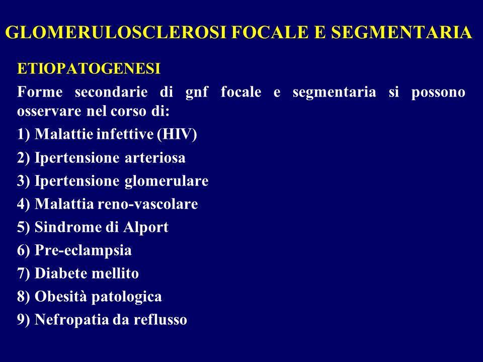 ETIOPATOGENESI Forme secondarie di gnf focale e segmentaria si possono osservare nel corso di: 1) Malattie infettive (HIV) 2) Ipertensione arteriosa 3