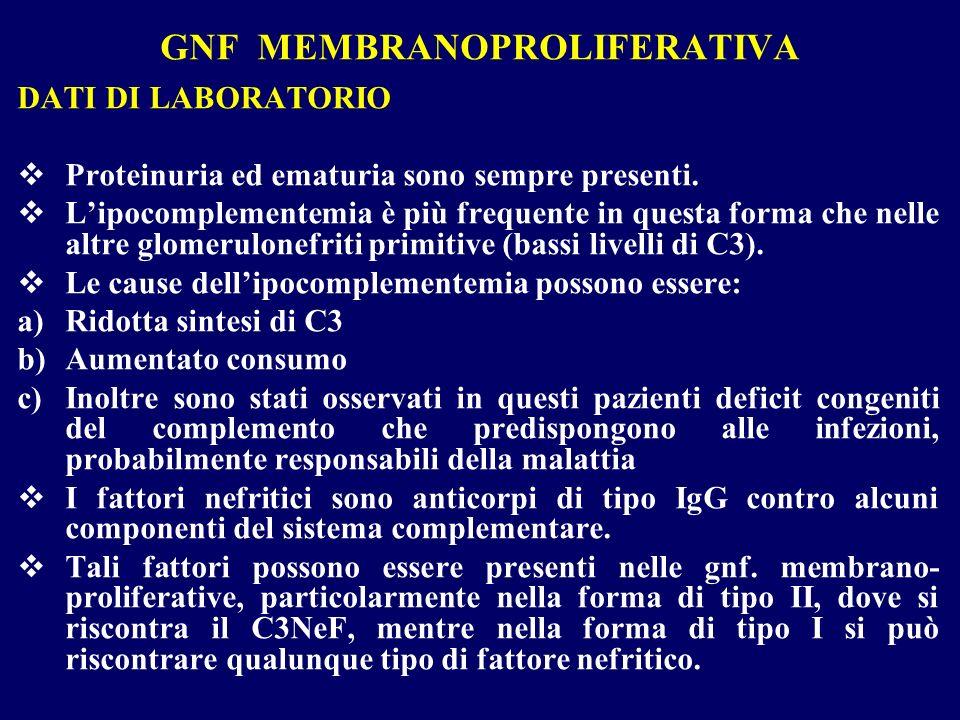 GNF MEMBRANOPROLIFERATIVA DATI DI LABORATORIO Proteinuria ed ematuria sono sempre presenti. Lipocomplementemia è più frequente in questa forma che nel