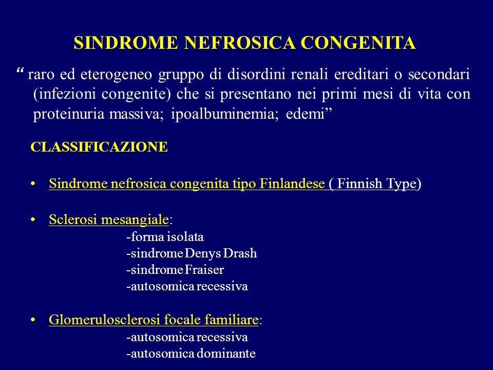 SINDROME NEFROSICA CONGENITA raro ed eterogeneo gruppo di disordini renali ereditari o secondari (infezioni congenite) che si presentano nei primi mes