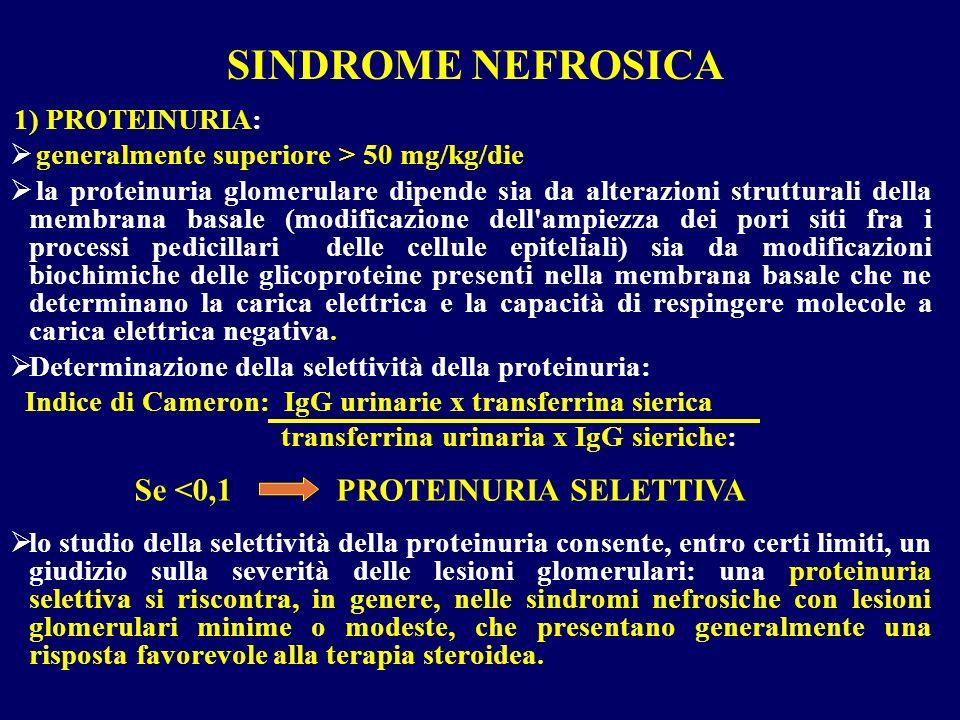 1) PROTEINURIA: generalmente superiore > 50 mg/kg/die la proteinuria glomerulare dipende sia da alterazioni strutturali della membrana basale (modific
