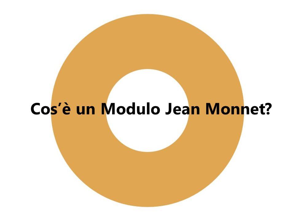 Cosè un Modulo Jean Monnet?