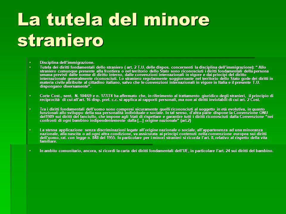 La tutela del minore straniero Disciplina dellimmigrazione. Disciplina dellimmigrazione. Tutela dei diritti fondamentali dello straniero ( art. 2 T.U.