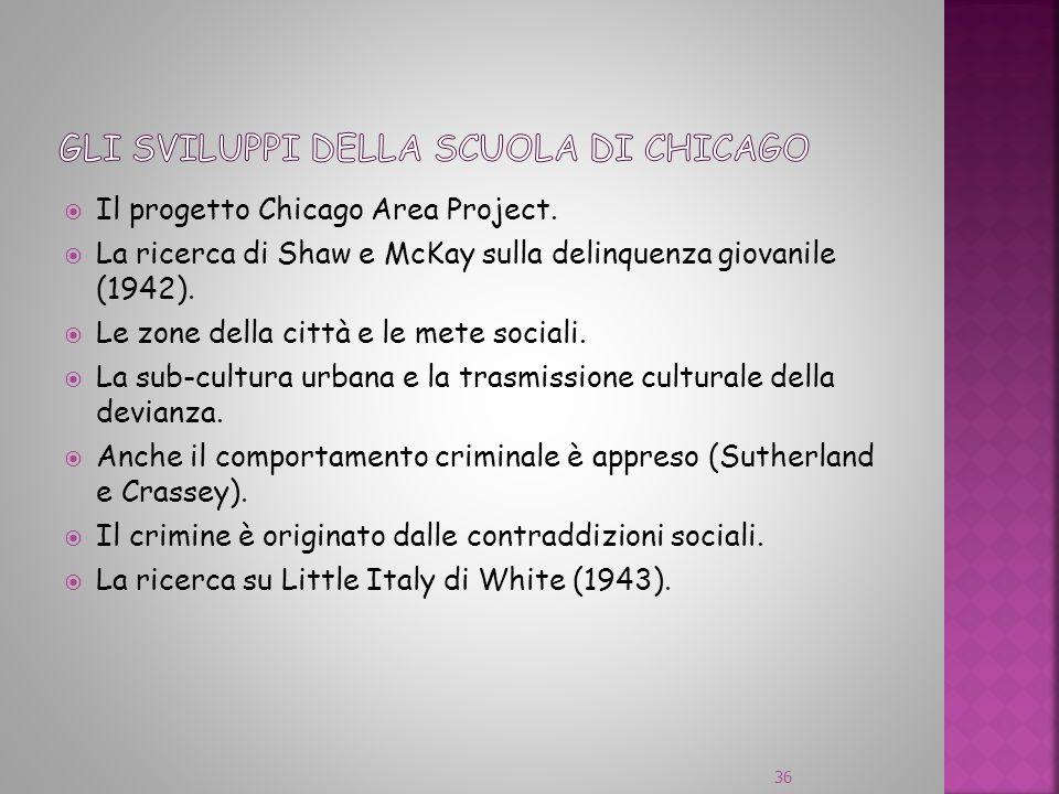 Il progetto Chicago Area Project. La ricerca di Shaw e McKay sulla delinquenza giovanile (1942). Le zone della città e le mete sociali. La sub-cultura