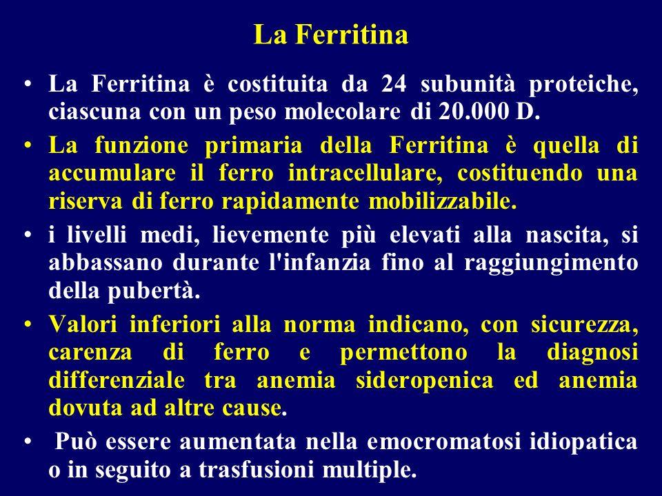 La Ferritina La Ferritina è costituita da 24 subunità proteiche, ciascuna con un peso molecolare di 20.000 D. La funzione primaria della Ferritina è q