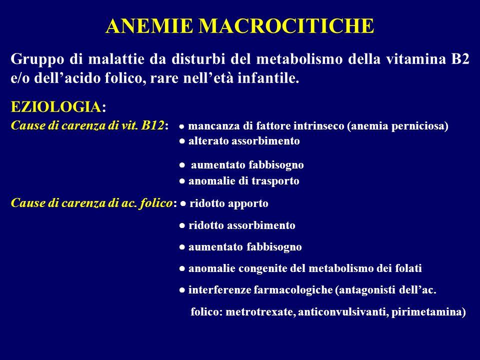 ANEMIE MACROCITICHE Gruppo di malattie da disturbi del metabolismo della vitamina B2 e/o dellacido folico, rare nelletà infantile. EZIOLOGIA: Cause di
