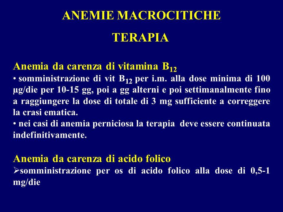 ANEMIE MACROCITICHE Anemia da carenza di vitamina B 12 somministrazione di vit B 12 per i.m. alla dose minima di 100 µg/die per 10-15 gg, poi a gg alt