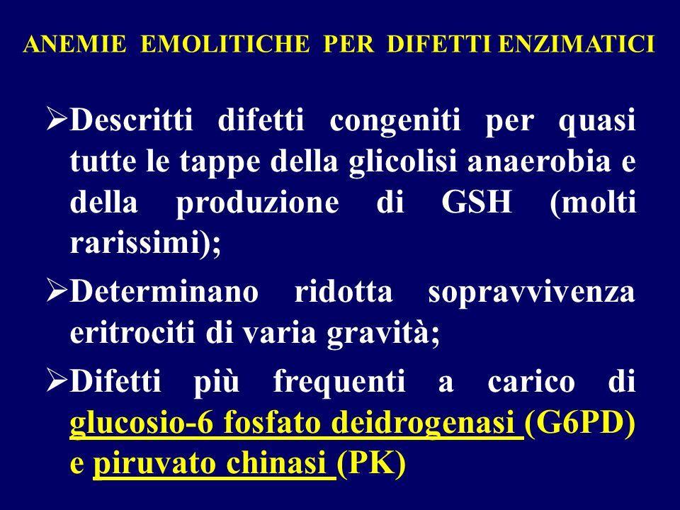 ANEMIE EMOLITICHE PER DIFETTI ENZIMATICI Descritti difetti congeniti per quasi tutte le tappe della glicolisi anaerobia e della produzione di GSH (mol