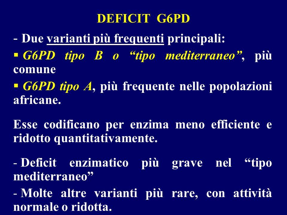 DEFICIT G6PD - Due varianti più frequenti principali: G6PD tipo B o tipo mediterraneo, più comune G6PD tipo A, più frequente nelle popolazioni african