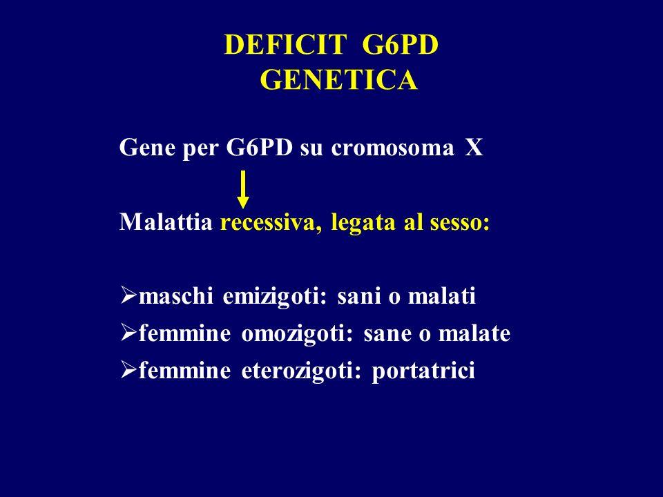 DEFICIT G6PD GENETICA Gene per G6PD su cromosoma X Malattia recessiva, legata al sesso: maschi emizigoti: sani o malati femmine omozigoti: sane o mala