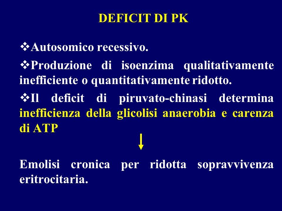 DEFICIT DI PK Autosomico recessivo. Produzione di isoenzima qualitativamente inefficiente o quantitativamente ridotto. Il deficit di piruvato-chinasi