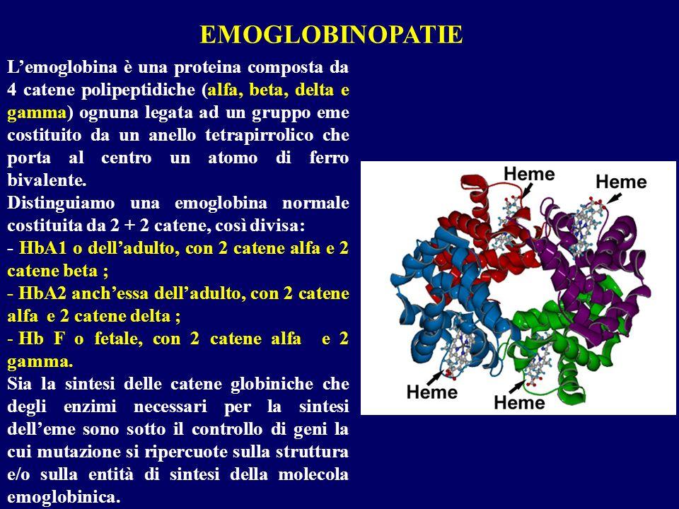 Lemoglobina è una proteina composta da 4 catene polipeptidiche (alfa, beta, delta e gamma) ognuna legata ad un gruppo eme costituito da un anello tetr