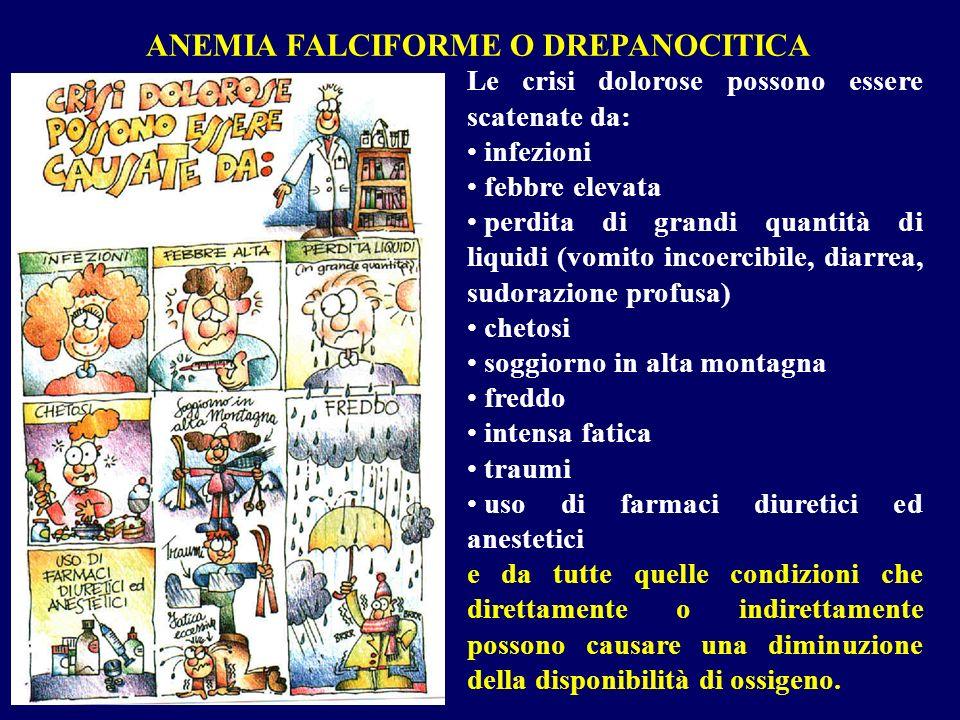 ANEMIA FALCIFORME O DREPANOCITICA Le crisi dolorose possono essere scatenate da: infezioni febbre elevata perdita di grandi quantità di liquidi (vomit