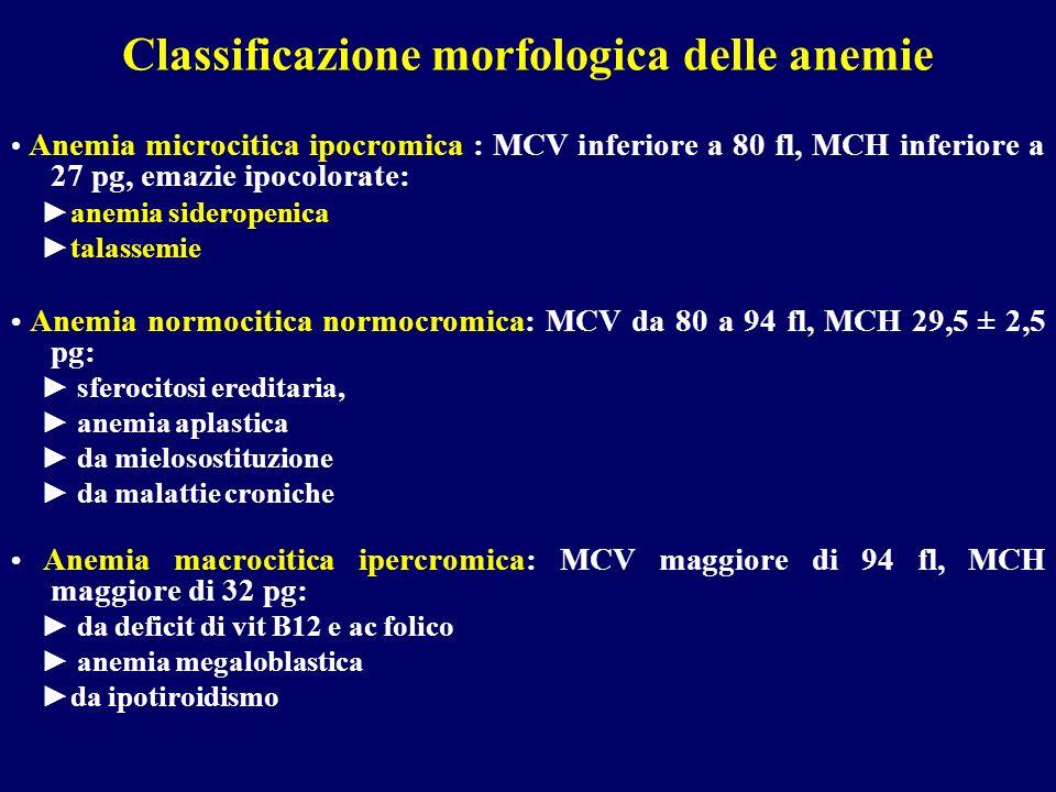 Classificazione morfologica delle anemie Anemia microcitica ipocromica : MCV inferiore a 80 fl, MCH inferiore a 27 pg, emazie ipocolorate: anemia side