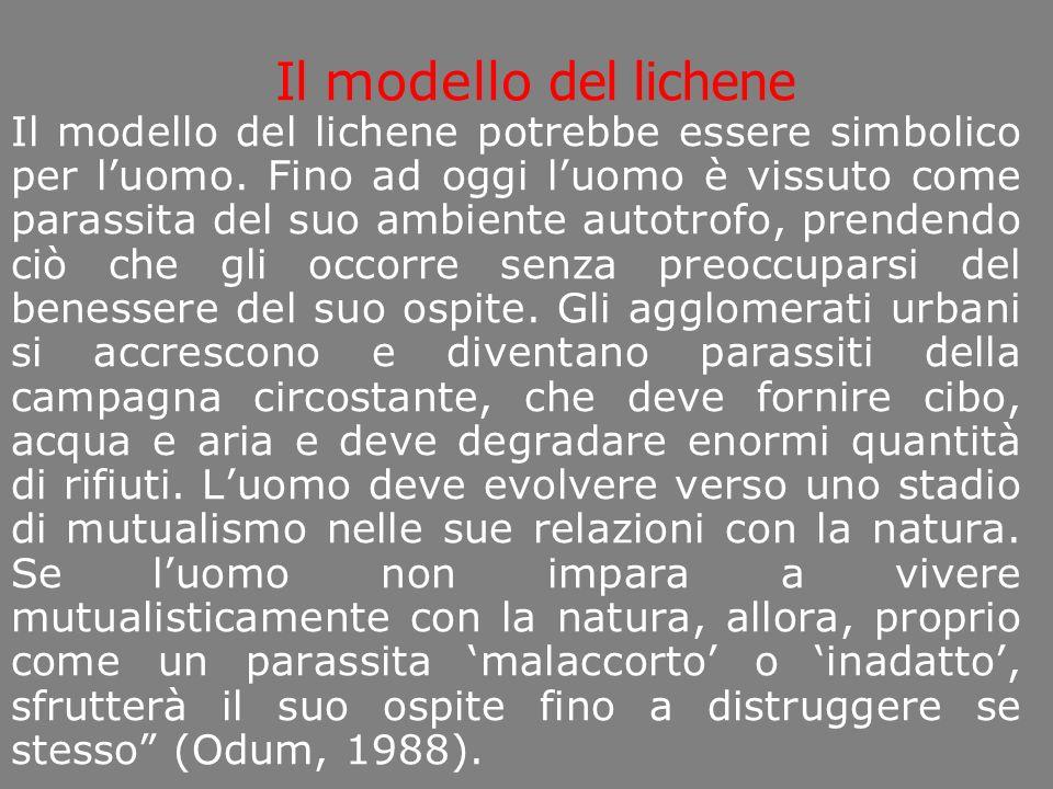 Il modello del lichene Il modello del lichene potrebbe essere simbolico per luomo.