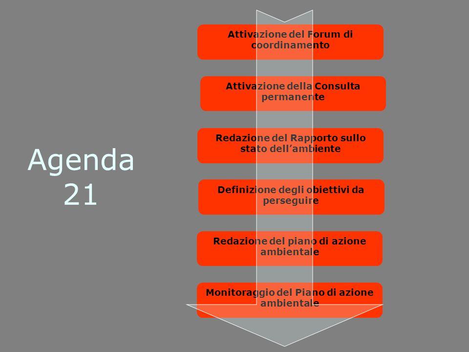 Agenda 21 Attivazione del Forum di coordinamento Attivazione della Consulta permanente Redazione del Rapporto sullo stato dellambiente Definizione degli obiettivi da perseguire Redazione del piano di azione ambientale Monitoraggio del Piano di azione ambientale