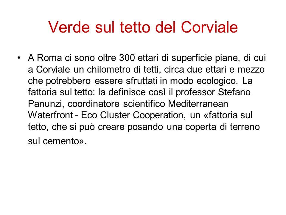 Verde sul tetto del Corviale A Roma ci sono oltre 300 ettari di superficie piane, di cui a Corviale un chilometro di tetti, circa due ettari e mezzo c