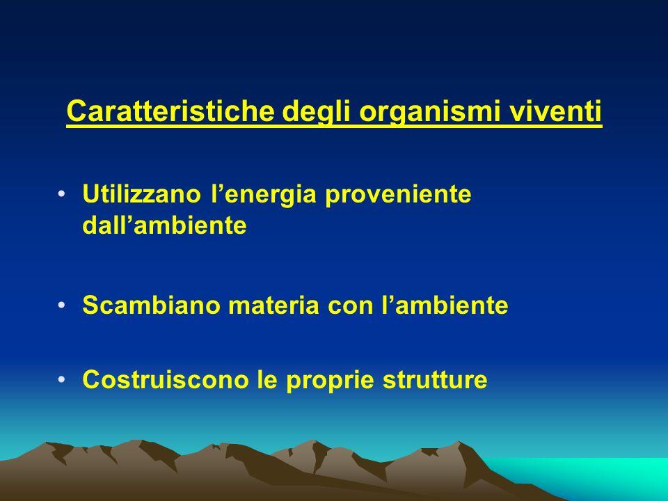 Caratteristiche degli organismi viventi Utilizzano lenergia proveniente dallambiente Scambiano materia con lambiente Costruiscono le proprie strutture