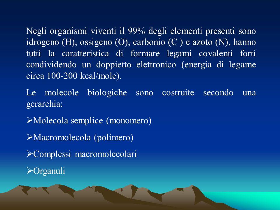 Negli organismi viventi il 99% degli elementi presenti sono idrogeno (H), ossigeno (O), carbonio (C ) e azoto (N), hanno tutti la caratteristica di fo
