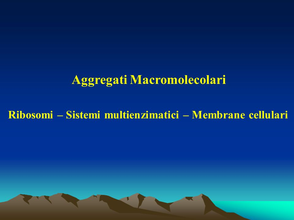 Aggregati Macromolecolari Ribosomi – Sistemi multienzimatici – Membrane cellulari