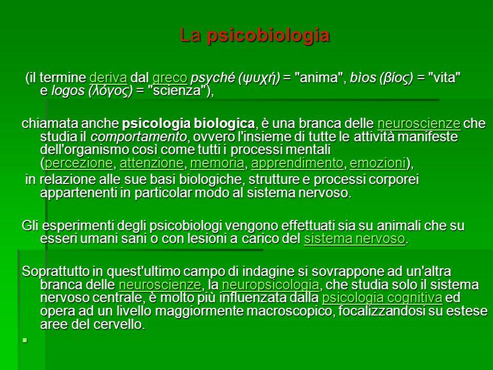 La psicobiologia (il termine deriva dal greco psyché (ψυχή) =