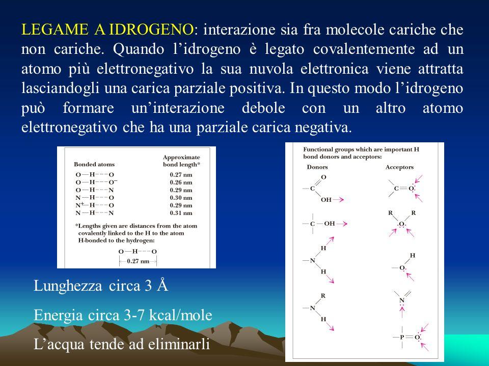 LEGAME A IDROGENO: interazione sia fra molecole cariche che non cariche. Quando lidrogeno è legato covalentemente ad un atomo più elettronegativo la s
