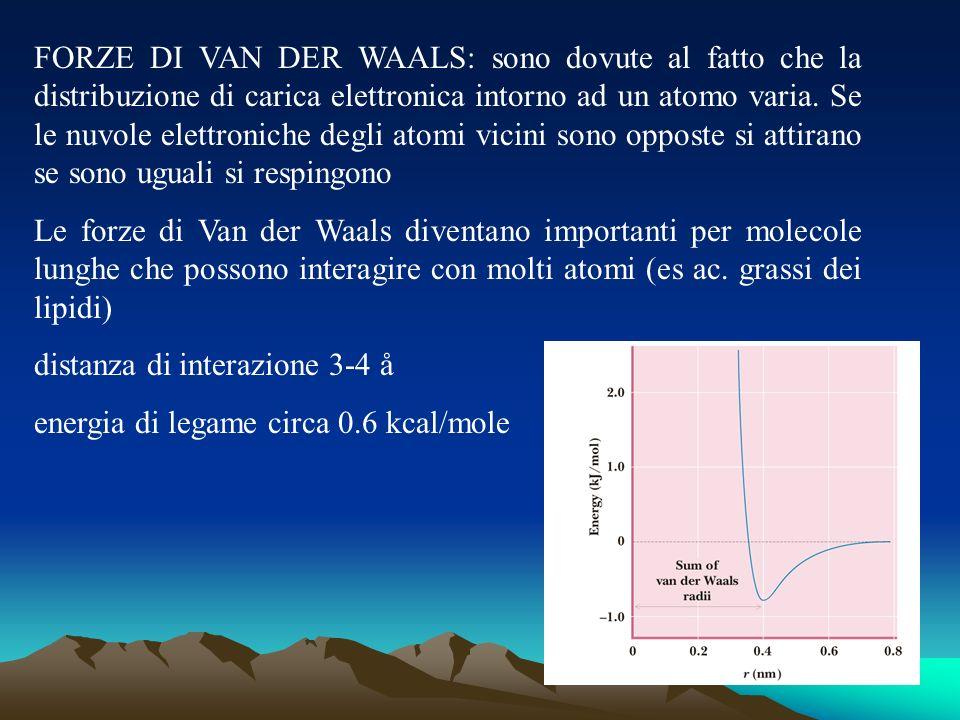 FORZE DI VAN DER WAALS: sono dovute al fatto che la distribuzione di carica elettronica intorno ad un atomo varia. Se le nuvole elettroniche degli ato