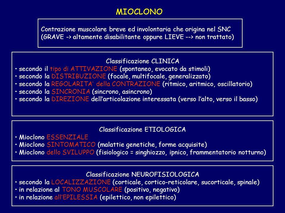 MIOCLONO Classificazione CLINICA secondo il tipo di ATTIVAZIONE (spontaneo, evocato da stimoli) secondo la DISTRIBUZIONE (focale, multifocale, general