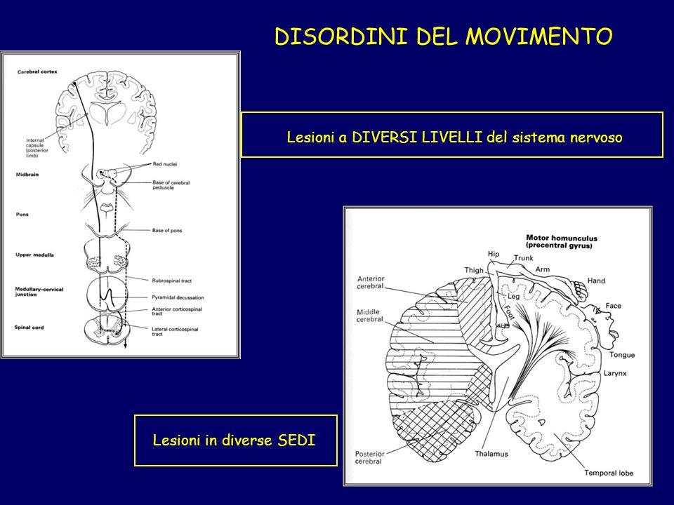 DISORDINI DEL MOVIMENTO Lesioni a DIVERSI LIVELLI del sistema nervoso Lesioni in diverse SEDI