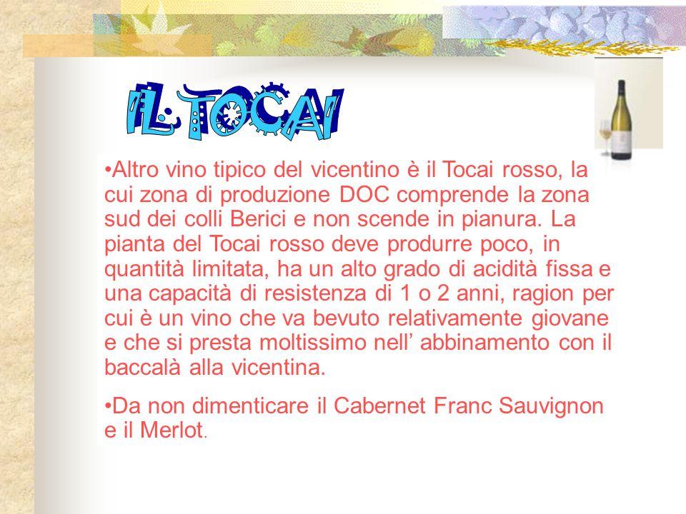 Altro vino tipico del vicentino è il Tocai rosso, la cui zona di produzione DOC comprende la zona sud dei colli Berici e non scende in pianura.