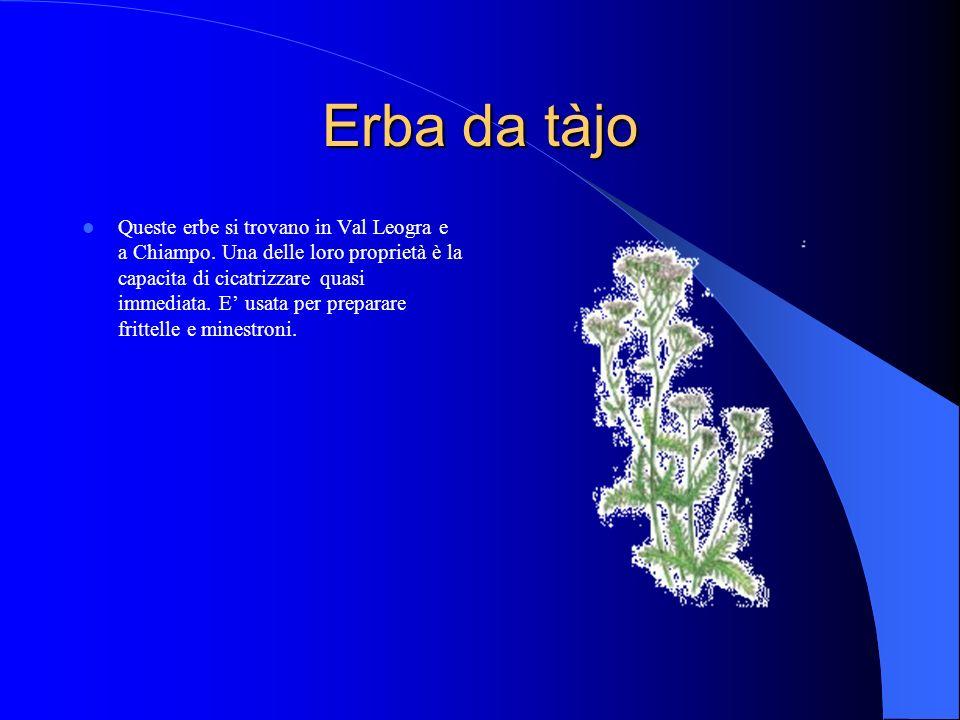 Erba da tàjo Queste erbe si trovano in Val Leogra e a Chiampo.