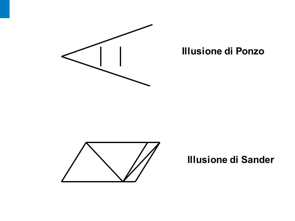 Illusione di Ponzo Illusione di Sander