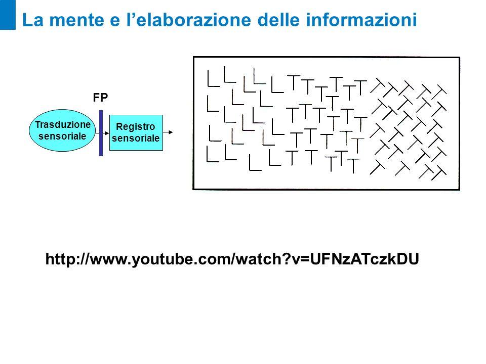 La mente e lelaborazione delle informazioni Registro sensoriale Trasduzione sensoriale FP http://www.youtube.com/watch?v=UFNzATczkDU