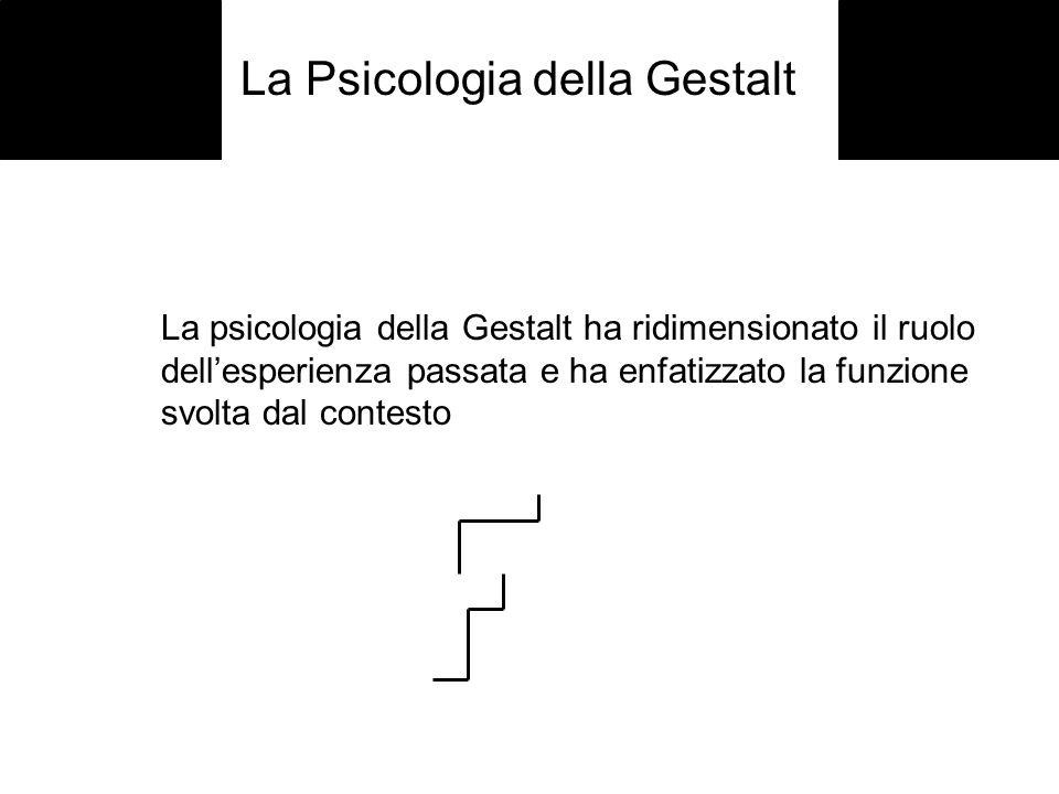 La Psicologia della Gestalt La psicologia della Gestalt ha ridimensionato il ruolo dellesperienza passata e ha enfatizzato la funzione svolta dal cont