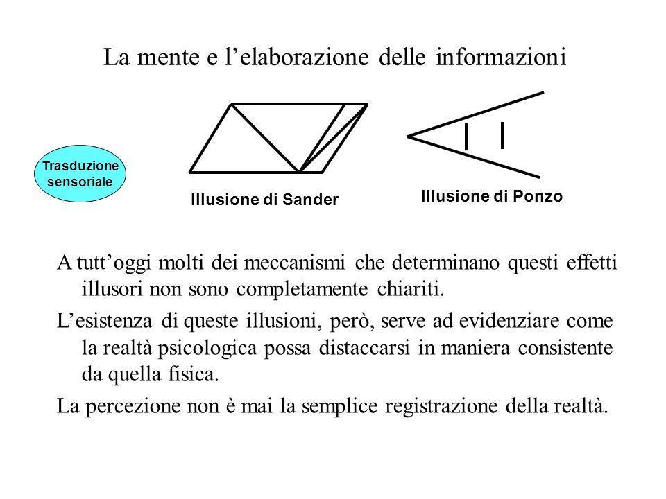 La mente e lelaborazione delle informazioni A tuttoggi molti dei meccanismi che determinano questi effetti illusori non sono completamente chiariti. L