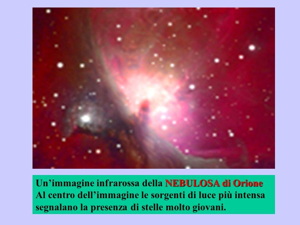 NEBULOSA di Orione Unimmagine infrarossa della NEBULOSA di Orione Al centro dellimmagine le sorgenti di luce più intensa segnalano la presenza di stel