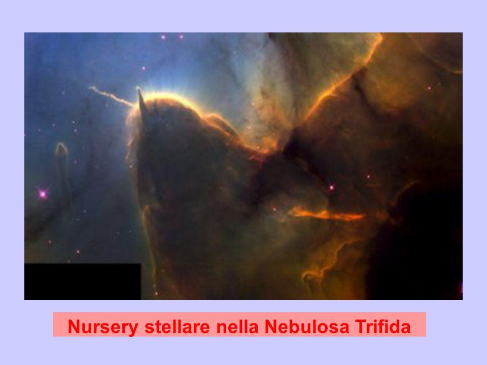 Nursery stellare nella Nebulosa Trifida