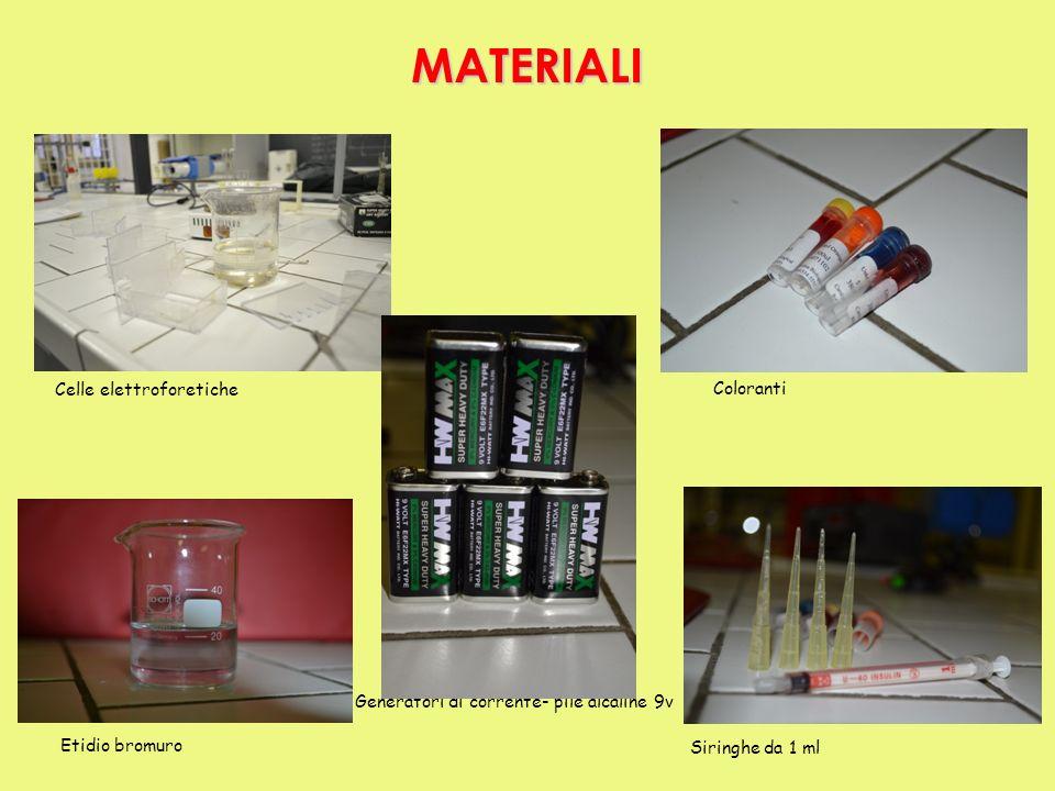 Celle elettroforetiche Coloranti Etidio bromuro Siringhe da 1 ml Generatori di corrente- pile alcaline 9v MATERIALI