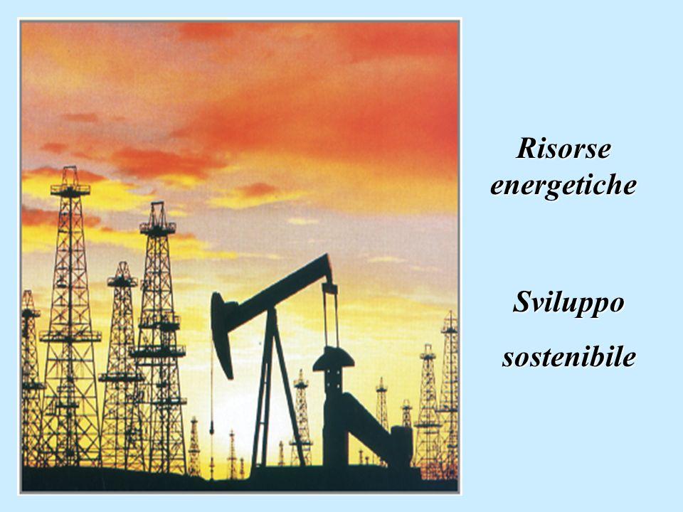 Risorse energetiche Svilupposostenibile