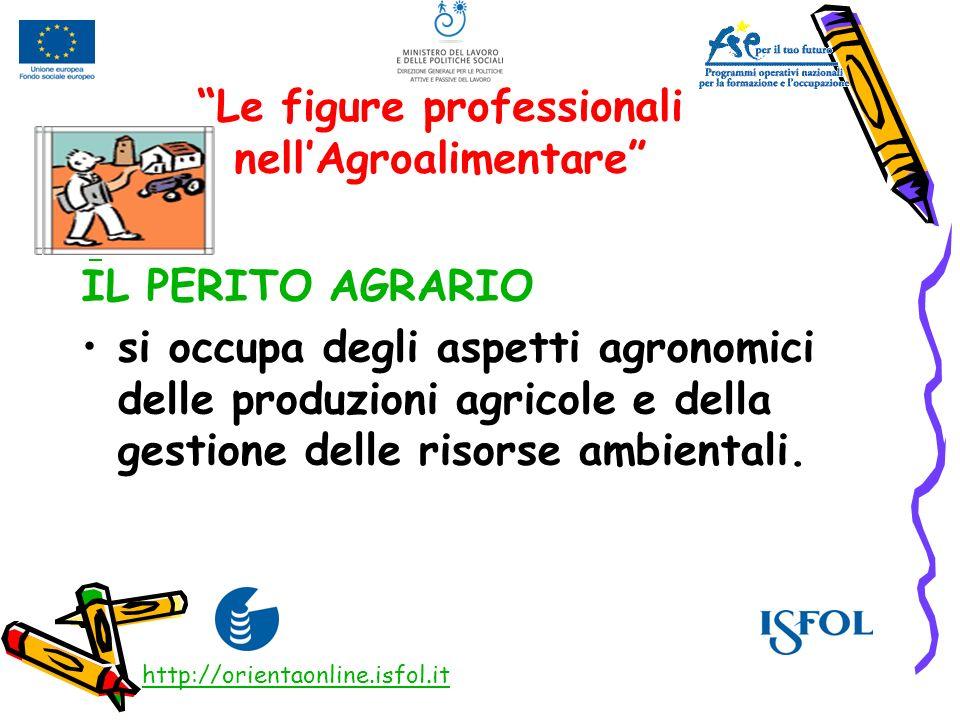 Le figure professionali nellAgroalimentare IL PERITO AGRARIO si occupa degli aspetti agronomici delle produzioni agricole e della gestione delle risor