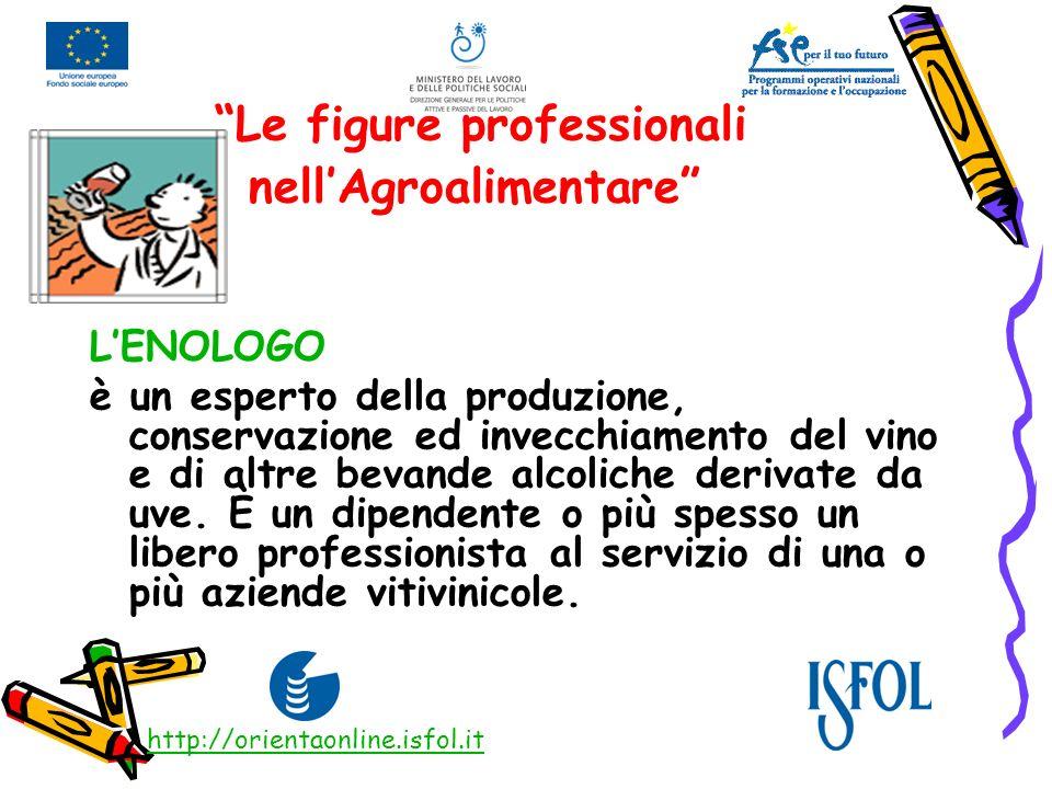 Le figure professionali nellAgroalimentare LENOLOGO è un esperto della produzione, conservazione ed invecchiamento del vino e di altre bevande alcolic