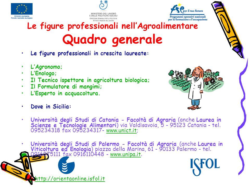 Le figure professionali nellAgroalimentare Quadro generale Le figure professionali in crescita laureate: LAgronomo; LEnologo; Il Tecnico ispettore in