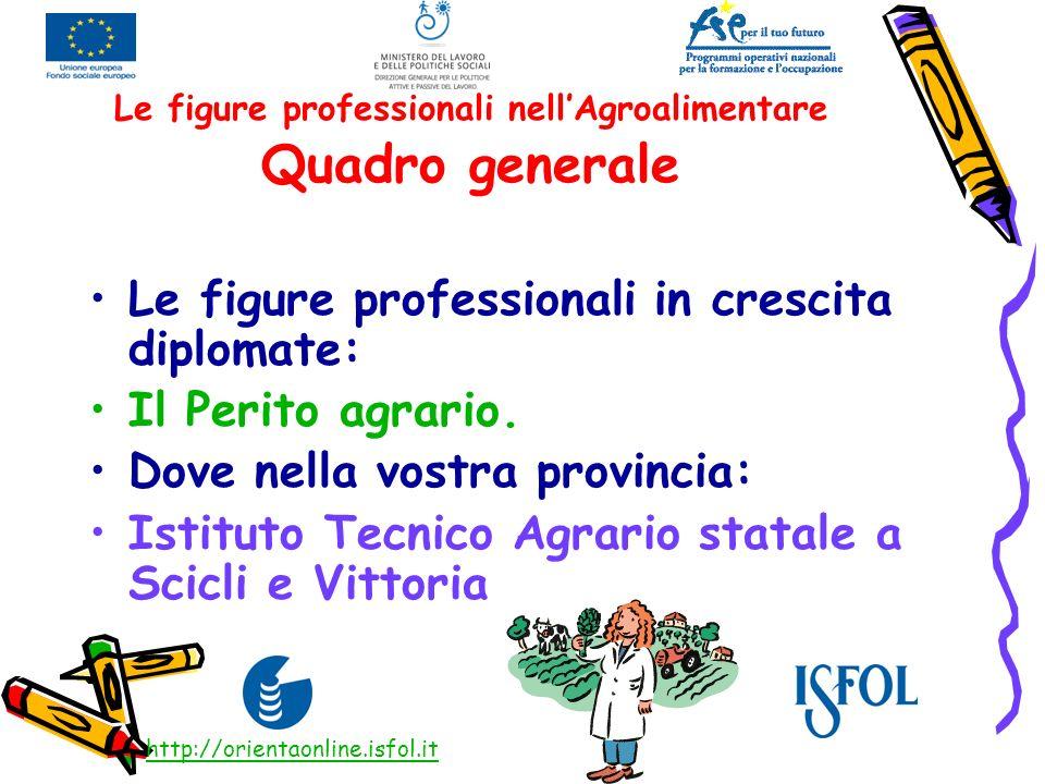 Le figure professionali nellAgroalimentare Quadro generale Le figure professionali in crescita diplomate: Il Perito agrario. Dove nella vostra provinc