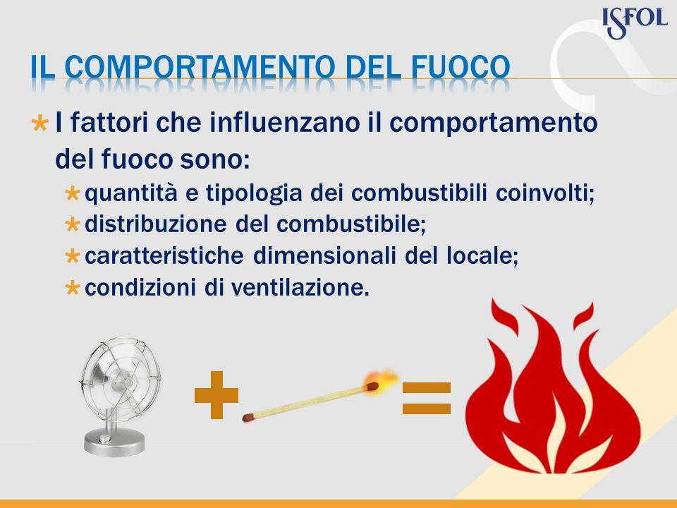 I fattori che influenzano il comportamento del fuoco sono: quantità e tipologia dei combustibili coinvolti; distribuzione del combustibile; caratteris