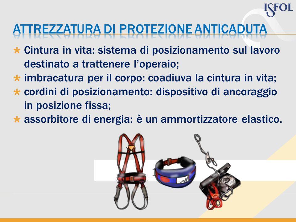 Cintura in vita: sistema di posizionamento sul lavoro destinato a trattenere loperaio; imbracatura per il corpo: coadiuva la cintura in vita; cordini